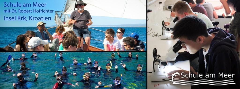 Programm Schule am Meer
